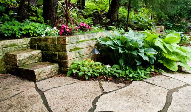 stone wall and shade garden